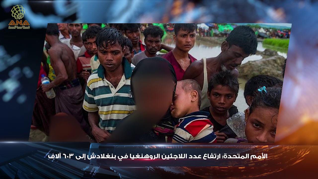 حدث في أراكان (215) تقديم / جاويد بدر