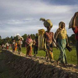 الهند تلقي القبض على أربعة من لاجئي الروهنغيا