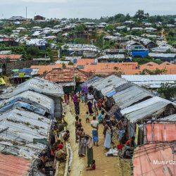 حافلات خاوية .. عملية إعادة الروهنغيا إلى ميانمار تتعثر