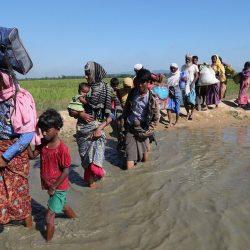 لغم أرضي يودي بحياة لاجئ روهنغي زرعته ميانمار على الحدود مع بنغلادش