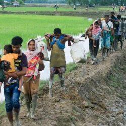 """متمردون بوذيون"" يخطفون 50 شرطيا مع ذويهم في ميانمار"