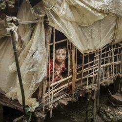 حلقة نقاش عن أزمة الروهنغيا وحلولها في جامعة دكا