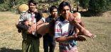 عمليات قتل الروهنغيا في أراكان تزيد بعد قضية محكمة العدل الدولية