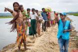 محام: على المجتمع الدولي متابعة الضغط على ميانمار لإعادة الروهنغيا (حوار)