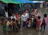 مفوضية حقوق الإنسان: القوانين العنصرية في ميانمار هي سبب اضطهاد الروهنغيا والأقليات الأخرى
