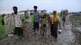 """منظمات عالمية: جيش ميانمار يشن""""حربا دعائية"""" ضد مسلمي أراكان"""